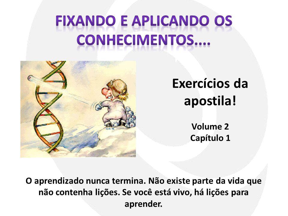 Fixando e aplicando os conhecimentos.... Exercícios da apostila!