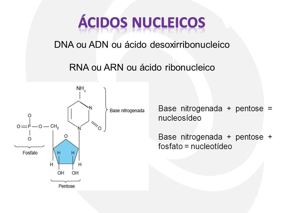 Ácidos nucleicos DNA ou ADN ou ácido desoxirribonucleico
