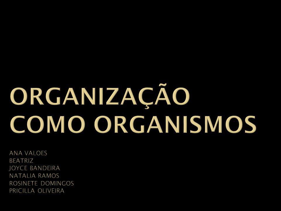 Organização como organismos ANA VALoes beatriz JOYCE BANDEIRA natalia ramos rosinete domingos pricilla oliveira