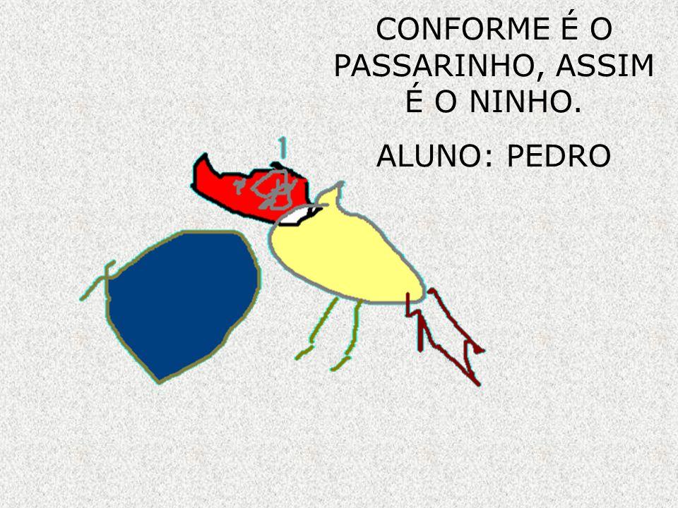 CONFORME É O PASSARINHO, ASSIM É O NINHO.