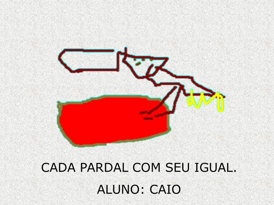CADA PARDAL COM SEU IGUAL.