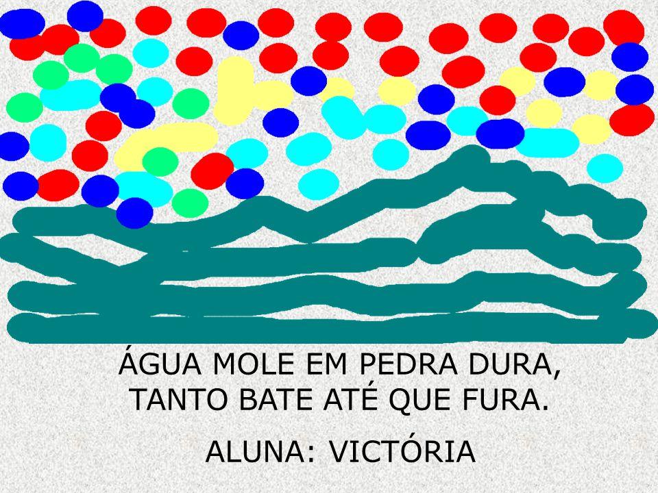 ÁGUA MOLE EM PEDRA DURA, TANTO BATE ATÉ QUE FURA.