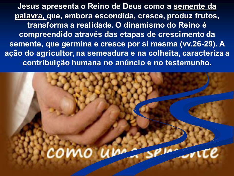 Jesus apresenta o Reino de Deus como a semente da palavra, que, embora escondida, cresce, produz frutos, transforma a realidade.