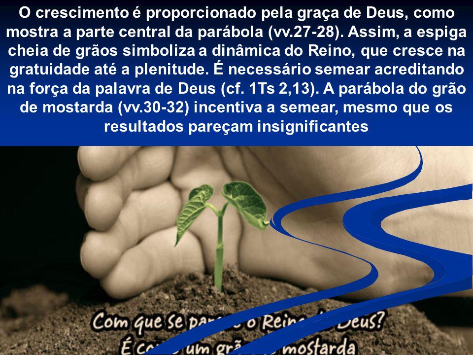 O crescimento é proporcionado pela graça de Deus, como mostra a parte central da parábola (vv.27-28).