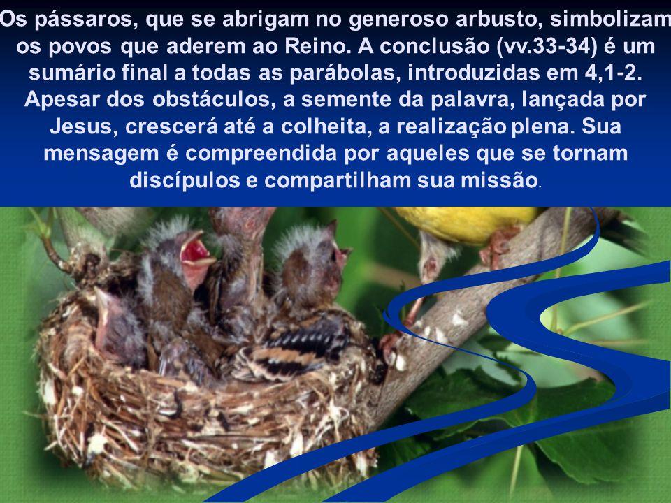 Os pássaros, que se abrigam no generoso arbusto, simbolizam os povos que aderem ao Reino.