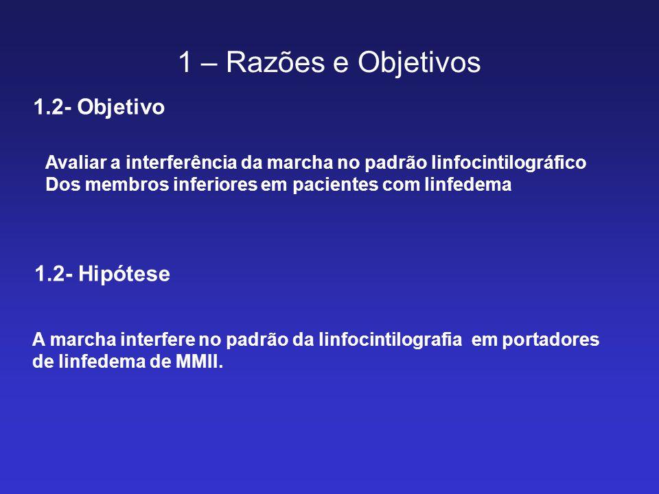 1 – Razões e Objetivos 1.2- Objetivo 1.2- Hipótese