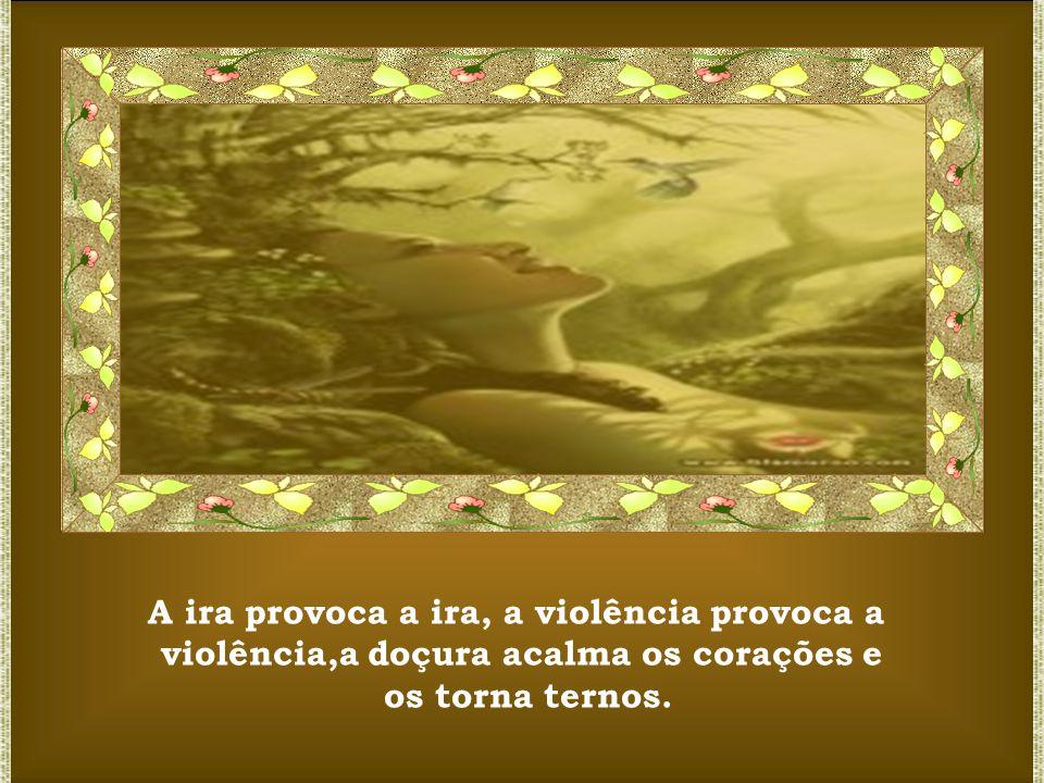 A ira provoca a ira, a violência provoca a