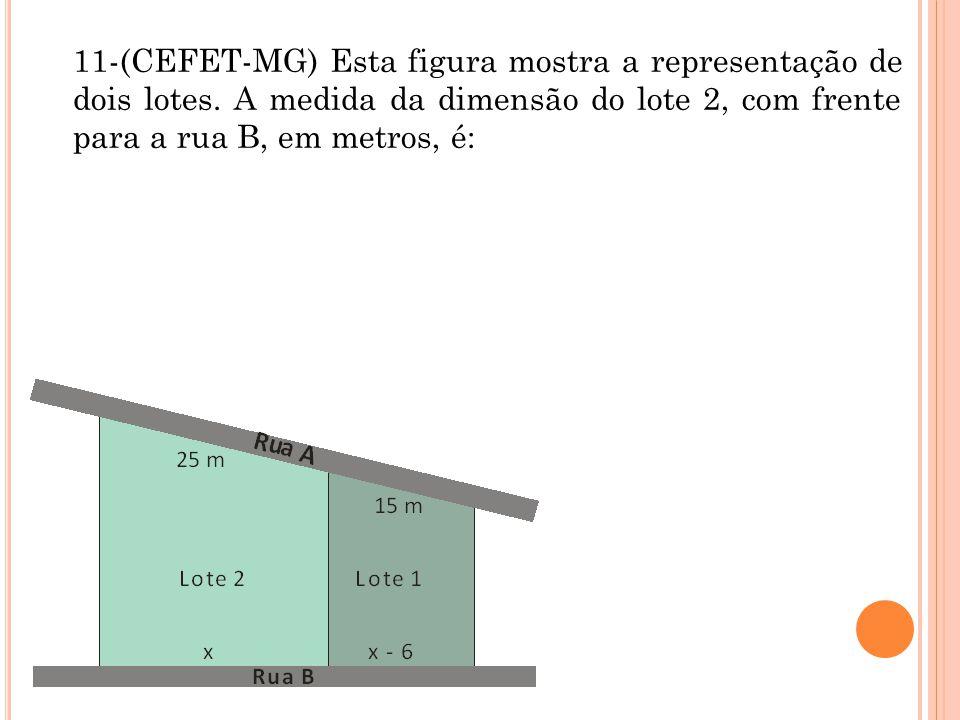 11-(CEFET-MG) Esta figura mostra a representação de dois lotes