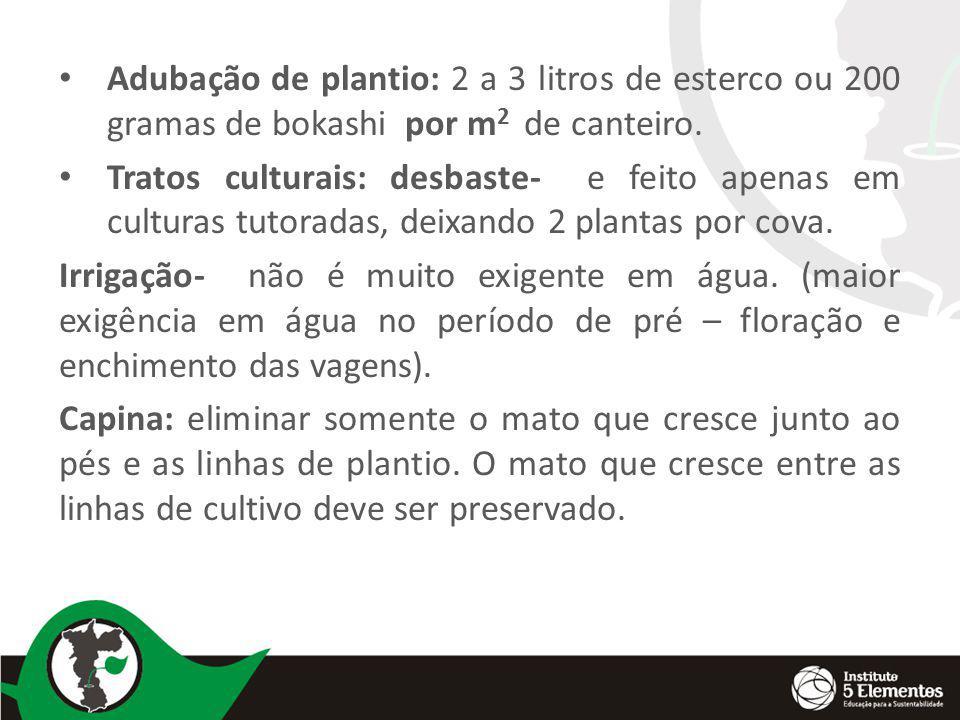 Adubação de plantio: 2 a 3 litros de esterco ou 200 gramas de bokashi por m2 de canteiro.