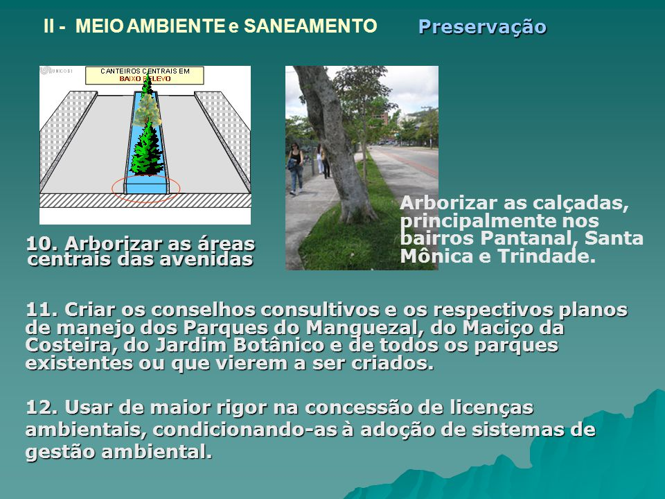 10. Arborizar as áreas centrais das avenidas