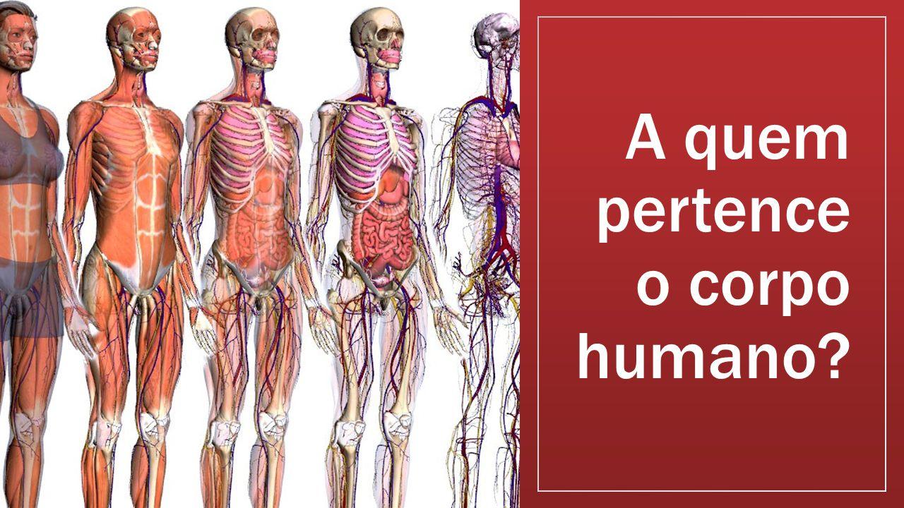 A quem pertence o corpo humano