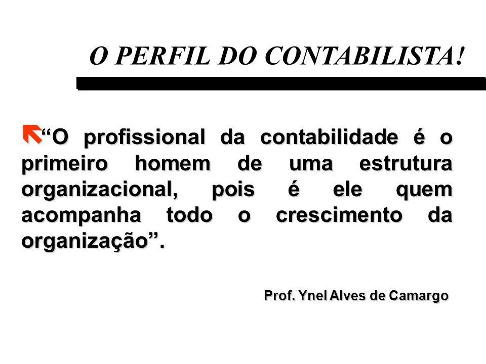 O PERFIL DO CONTABILISTA!