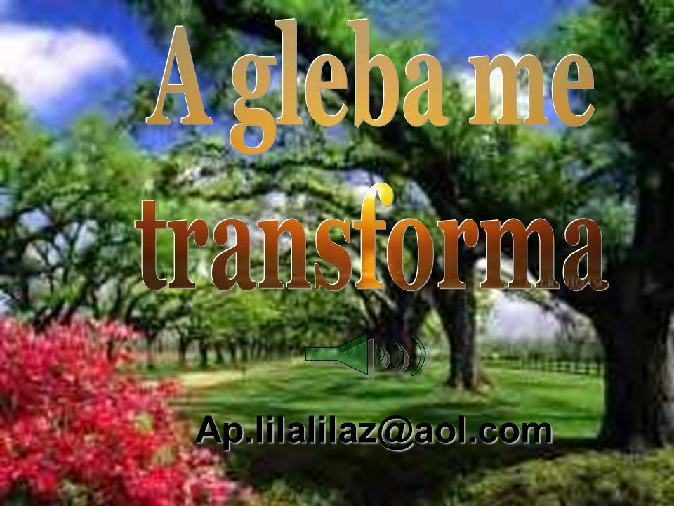 A gleba me transforma Ap.lilalilaz@aol.com