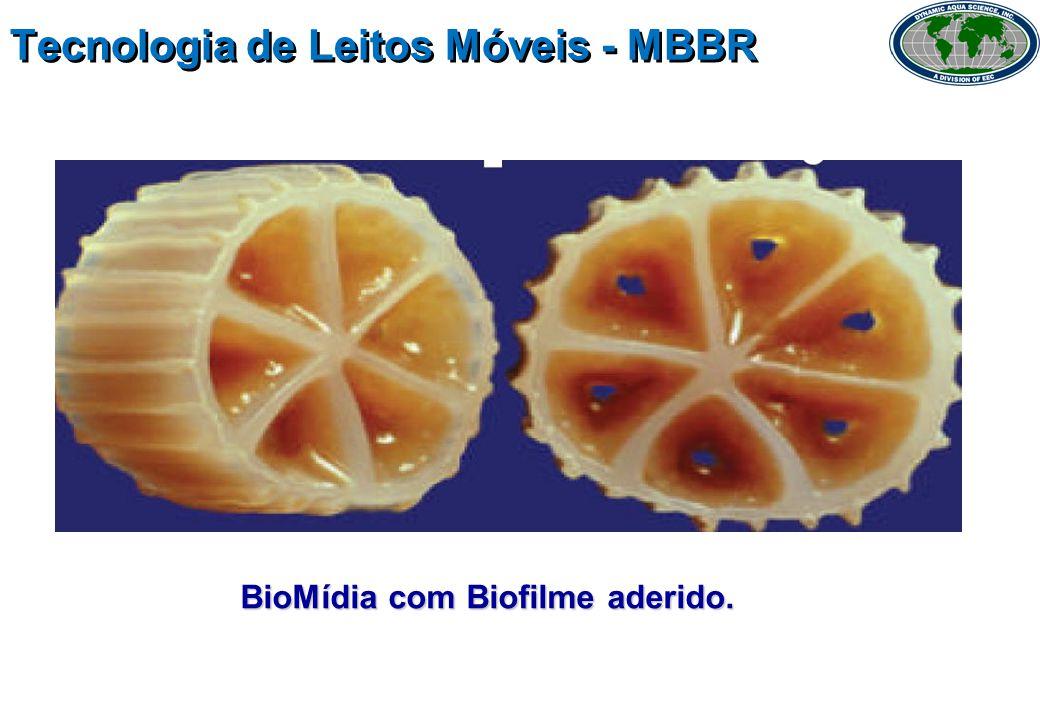 Tecnologia de Leitos Móveis - MBBR