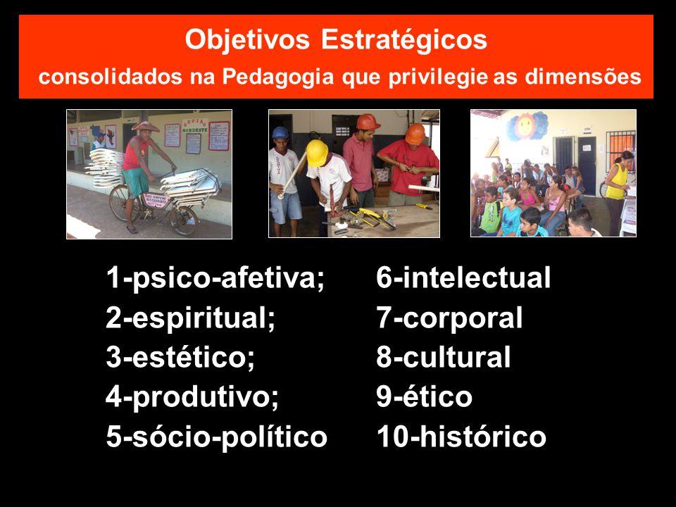 1-psico-afetiva; 6-intelectual 2-espiritual; 7-corporal