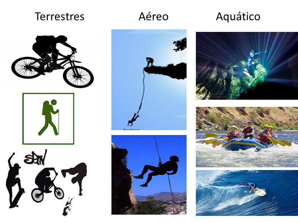 Terrestres Aéreo Aquático