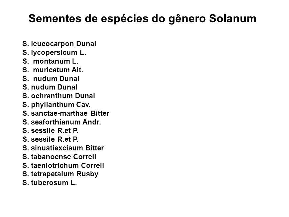 Sementes de espécies do gênero Solanum