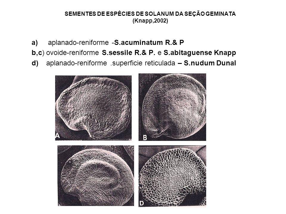 SEMENTES DE ESPÉCIES DE SOLANUM DA SEÇÃO GEMINATA (Knapp,2002)