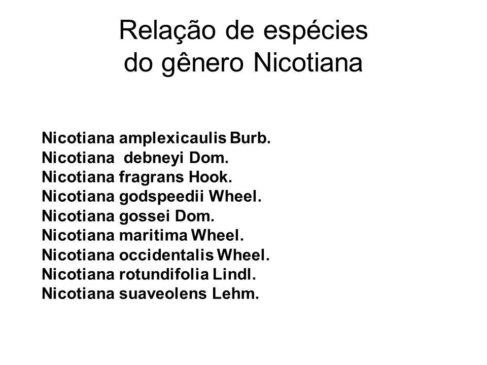 Relação de espécies do gênero Nicotiana