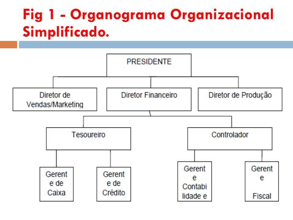 Fig 1 - Organograma Organizacional Simplificado.
