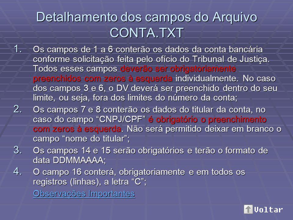 Detalhamento dos campos do Arquivo CONTA.TXT