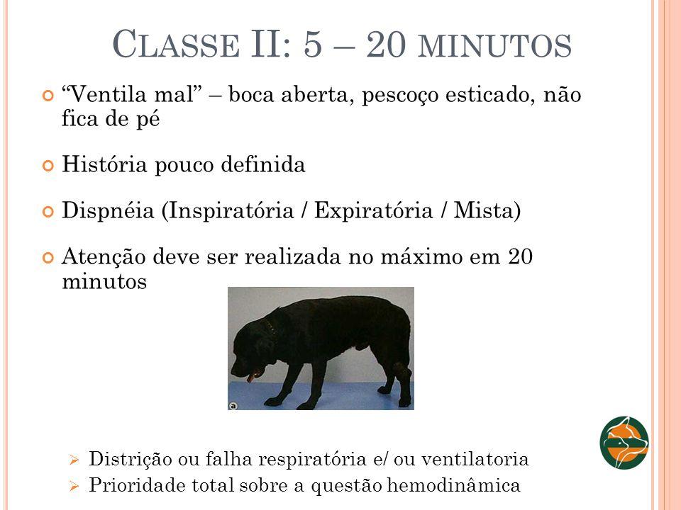 Classe II: 5 – 20 minutos Ventila mal – boca aberta, pescoço esticado, não fica de pé. História pouco definida.