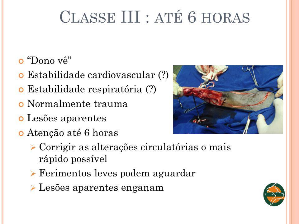 Classe III : até 6 horas Dono vê Estabilidade cardiovascular ( )