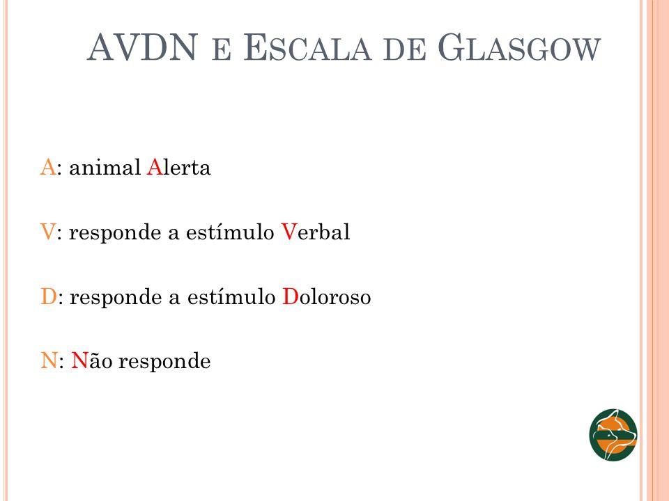 AVDN e Escala de Glasgow