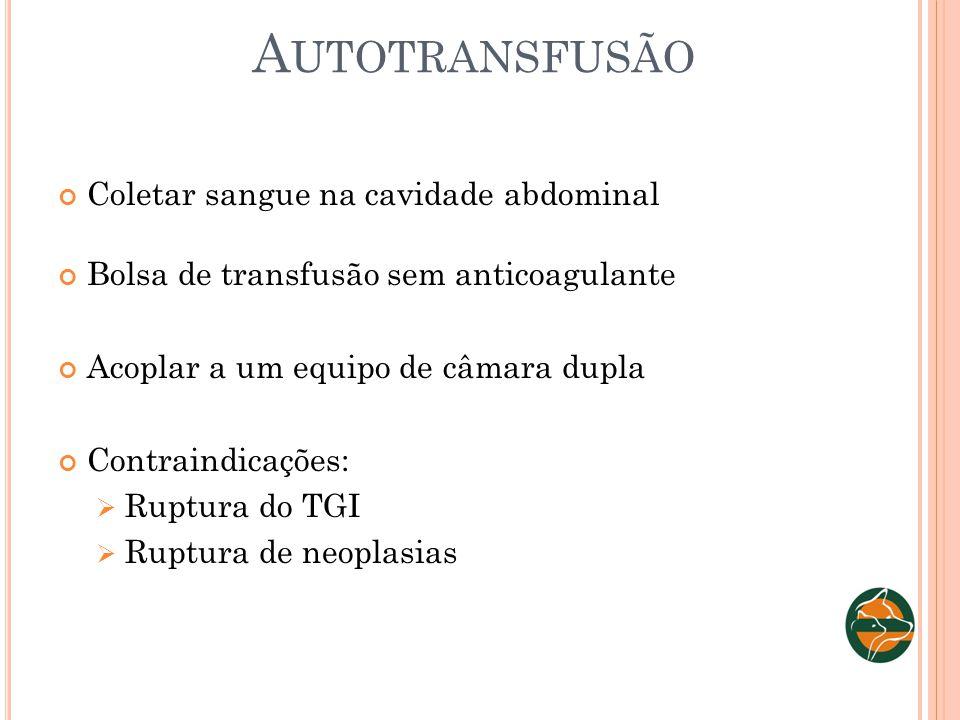 Autotransfusão Coletar sangue na cavidade abdominal
