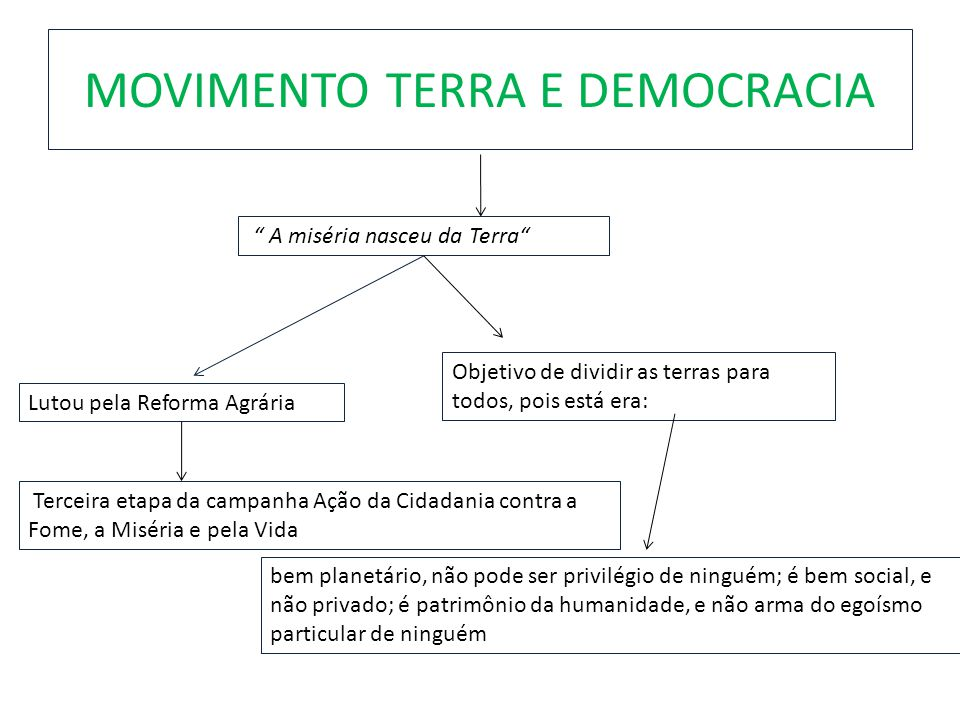 MOVIMENTO TERRA E DEMOCRACIA