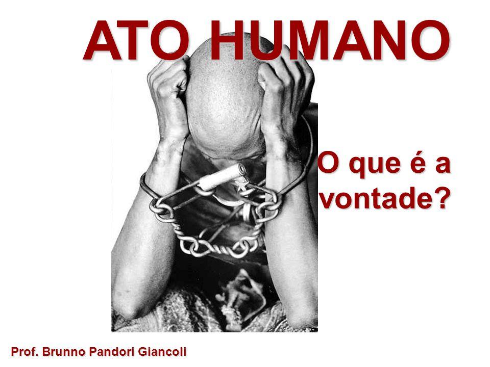 ATO HUMANO O que é a vontade Prof. Brunno Pandori Giancoli