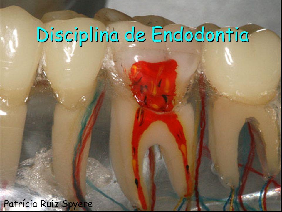 Disciplina de Endodontia