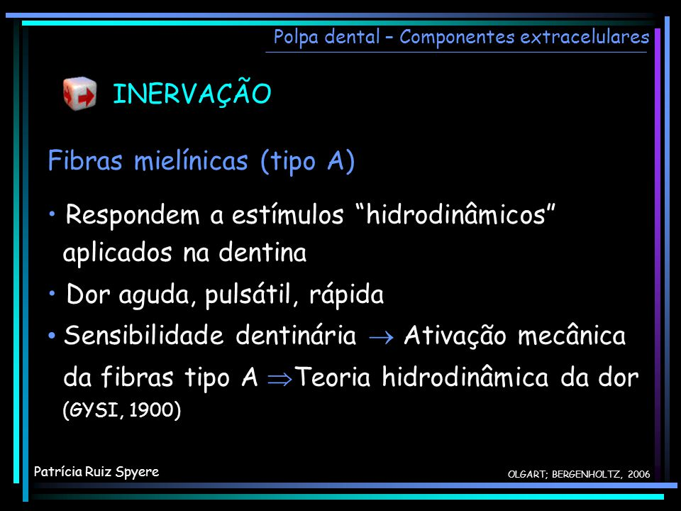 INERVAÇÃO Fibras mielínicas (tipo A)