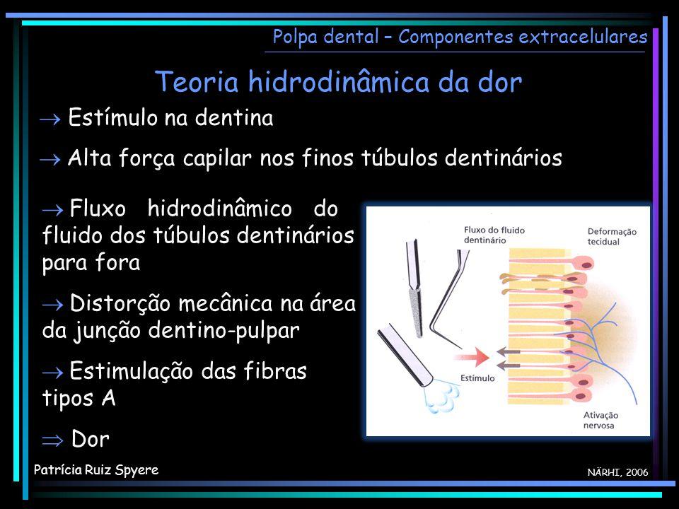 Teoria hidrodinâmica da dor