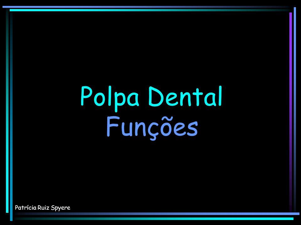 Polpa Dental Funções Patrícia Ruiz Spyere