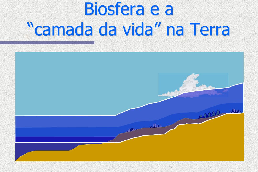Biosfera e a camada da vida na Terra