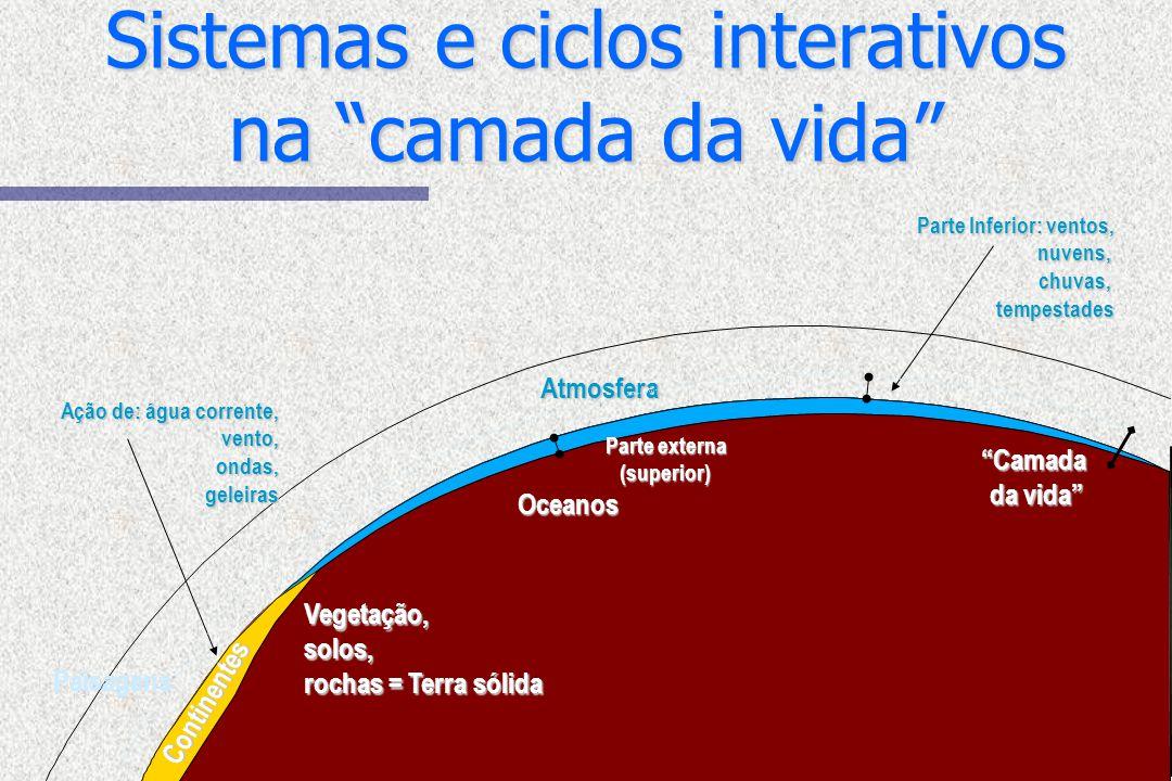 Sistemas e ciclos interativos na camada da vida