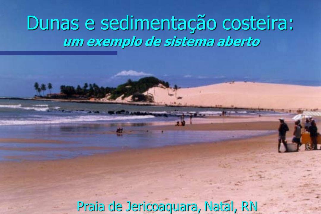 Dunas e sedimentação costeira: um exemplo de sistema aberto