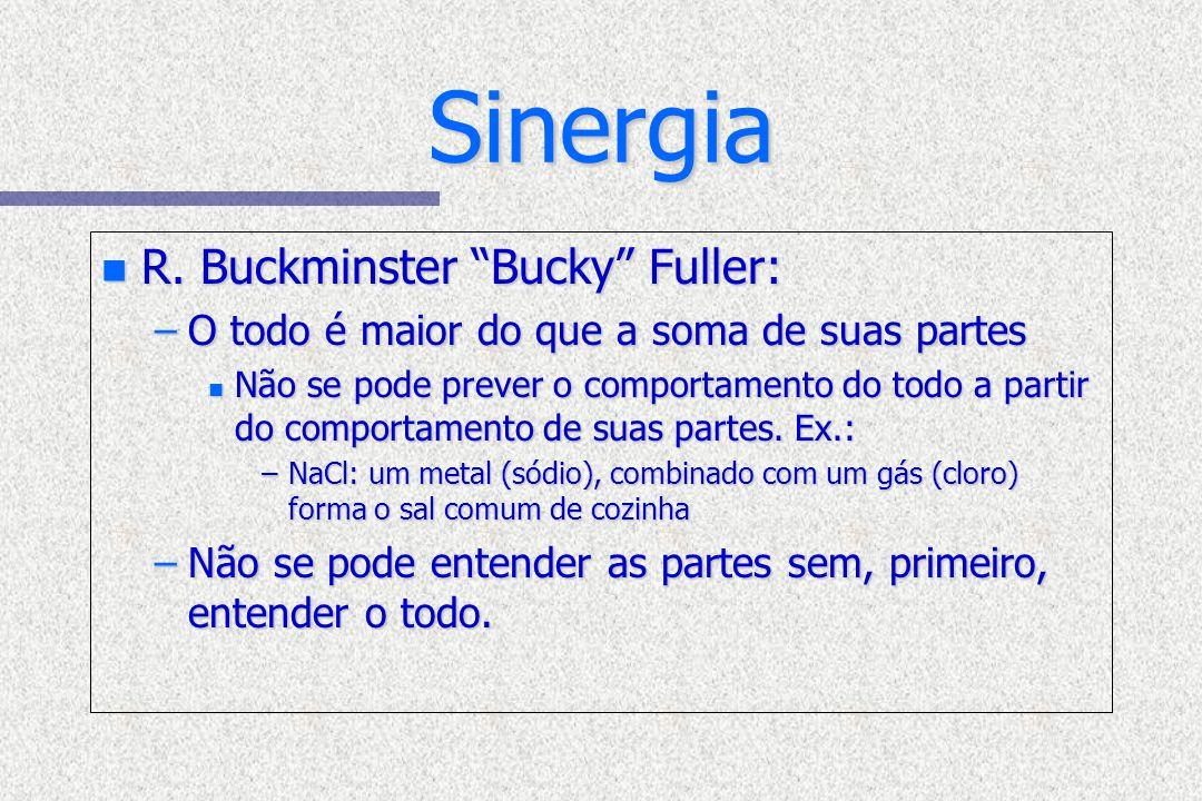 Sinergia R. Buckminster Bucky Fuller: