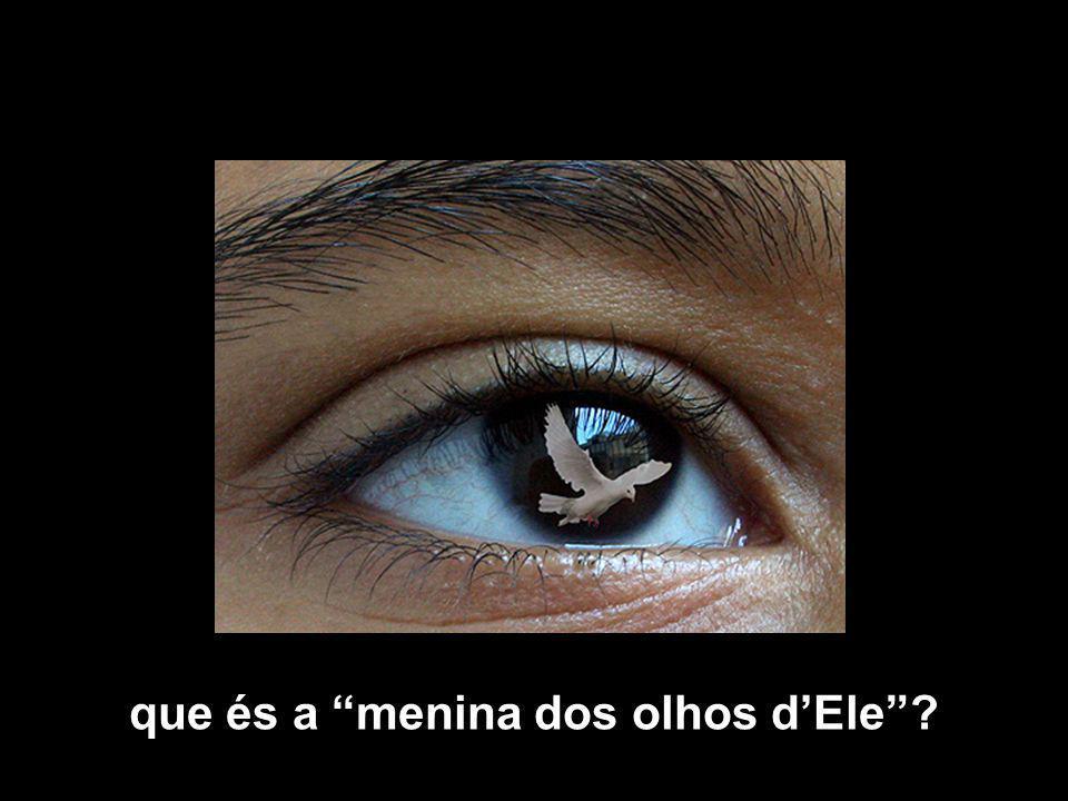 que és a menina dos olhos d'Ele