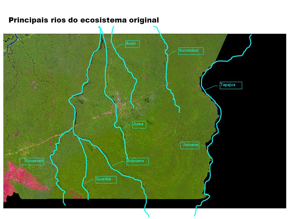 Principais rios do ecosistema original