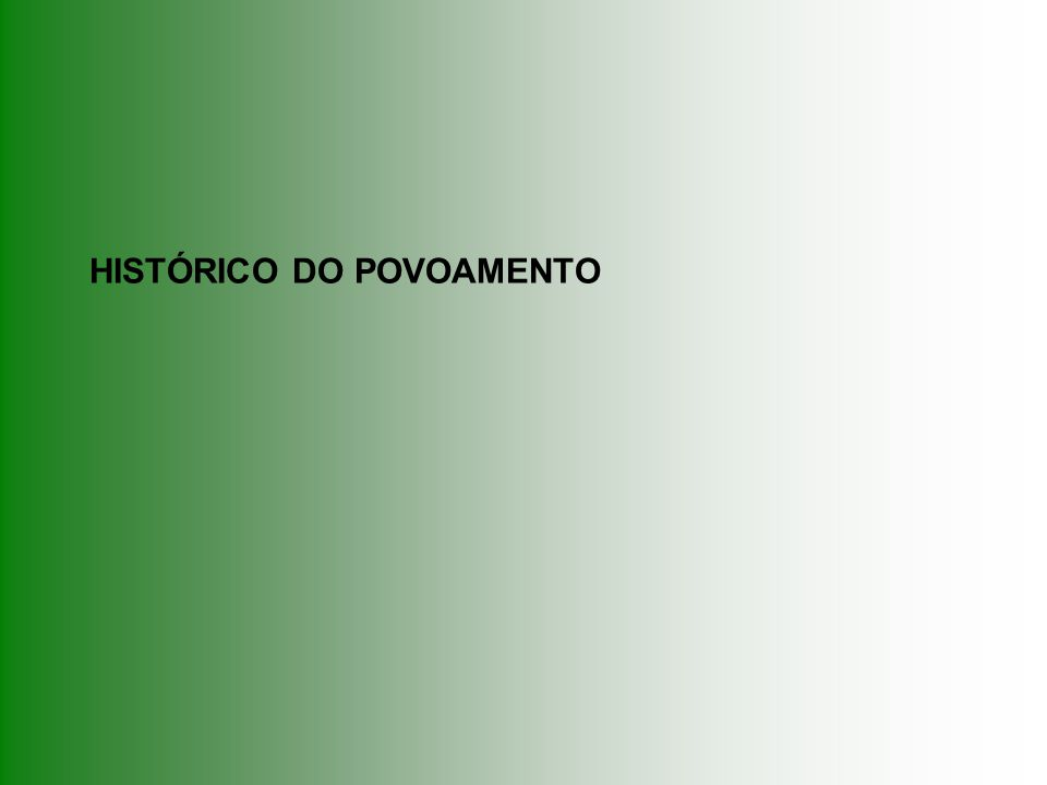 HISTÓRICO DO POVOAMENTO