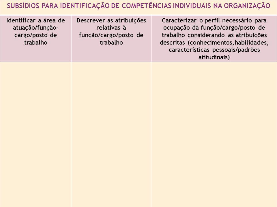 SUBSÍDIOS PARA IDENTIFICAÇÃO DE COMPETÊNCIAS INDIVIDUAIS NA ORGANIZAÇÃO