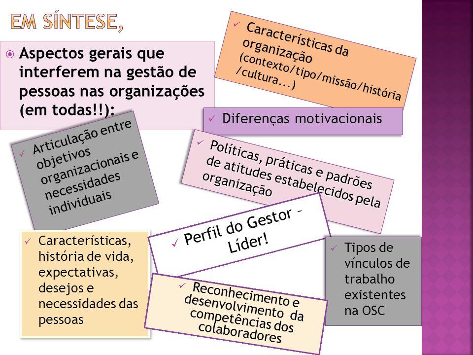 Em síntese, Características da organização (contexto/tipo/missão/história /cultura...)