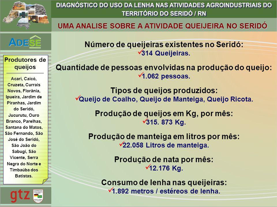 Número de queijeiras existentes no Seridó: