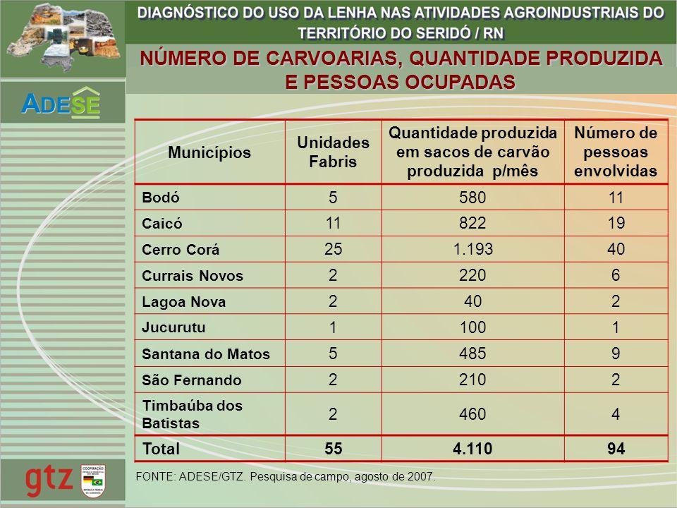 NÚMERO DE CARVOARIAS, QUANTIDADE PRODUZIDA E PESSOAS OCUPADAS