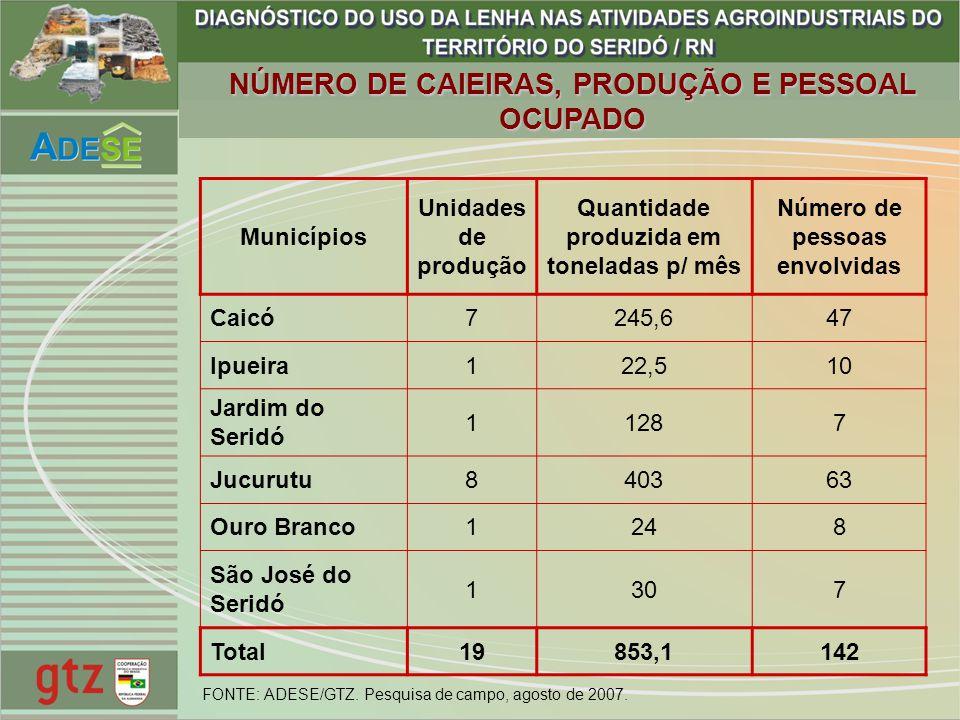Quantidade produzida em toneladas p/ mês Número de pessoas envolvidas