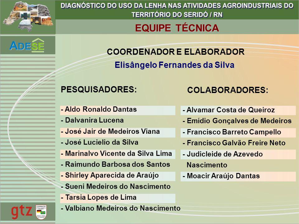 Elisângelo Fernandes da Silva