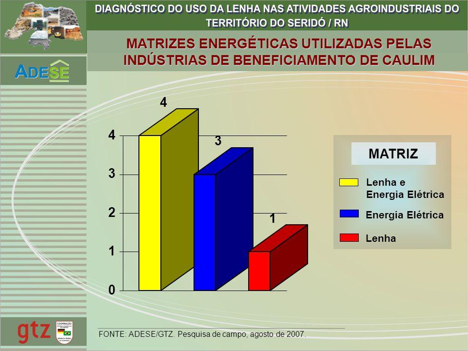 MATRIZES ENERGÉTICAS UTILIZADAS PELAS INDÚSTRIAS DE BENEFICIAMENTO DE CAULIM