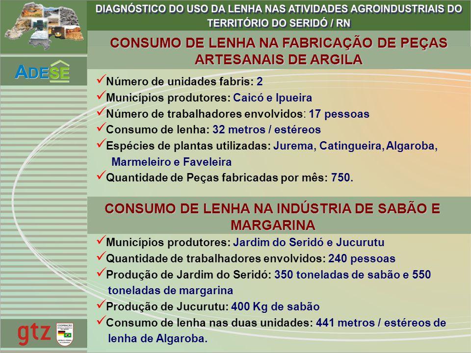 CONSUMO DE LENHA NA FABRICAÇÃO DE PEÇAS ARTESANAIS DE ARGILA